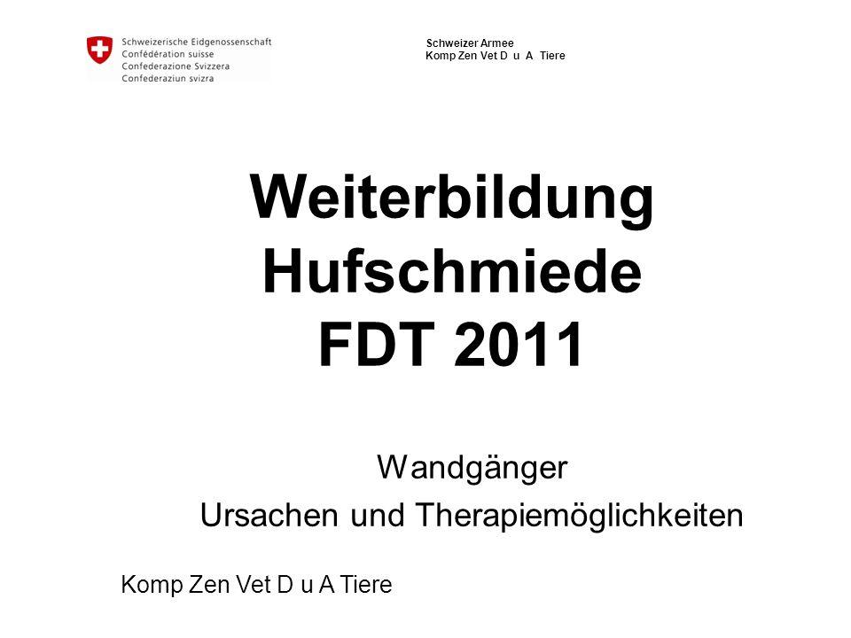 Schweizer Armee Komp Zen Vet D u A Tiere Weiterbildung Hufschmiede FDT 2011 Wandgänger Ursachen und Therapiemöglichkeiten