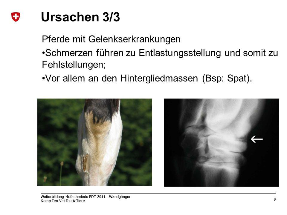 6 Weiterbildung Hufschmiede FDT 2011 – Wandgänger Komp Zen Vet D u A Tiere Ursachen 3/3 Pferde mit Gelenkserkrankungen Schmerzen führen zu Entlastungsstellung und somit zu Fehlstellungen; Vor allem an den Hintergliedmassen (Bsp: Spat).