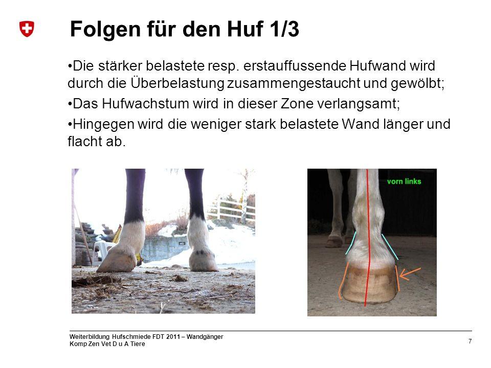 7 Weiterbildung Hufschmiede FDT 2011 – Wandgänger Komp Zen Vet D u A Tiere Folgen für den Huf 1/3 Die stärker belastete resp.