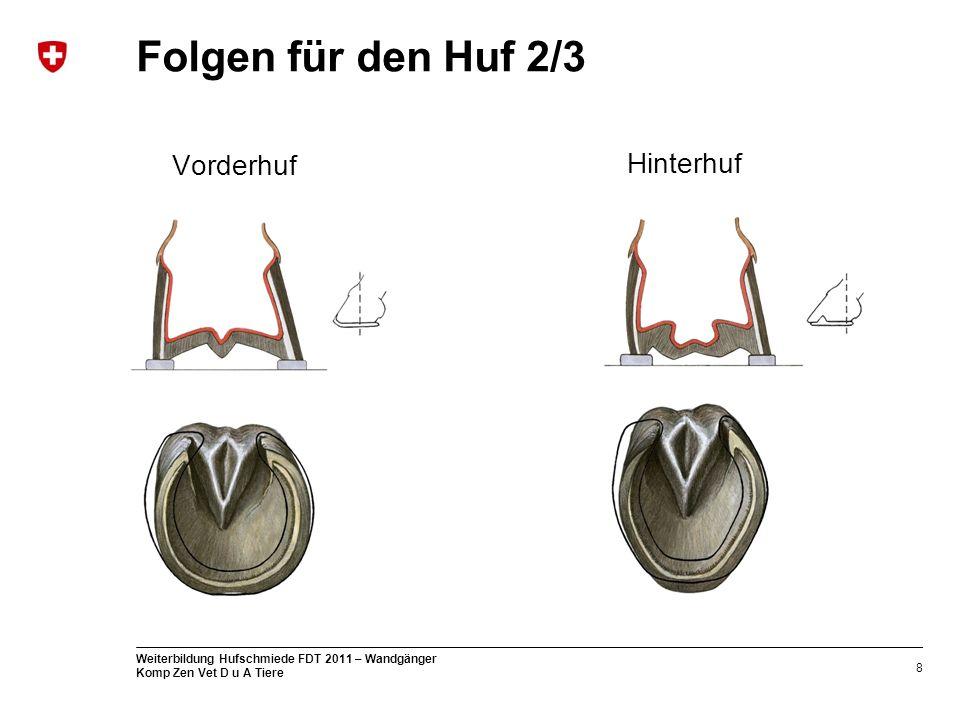 8 Weiterbildung Hufschmiede FDT 2011 – Wandgänger Komp Zen Vet D u A Tiere Folgen für den Huf 2/3 Vorderhuf Hinterhuf