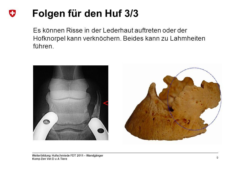 9 Weiterbildung Hufschmiede FDT 2011 – Wandgänger Komp Zen Vet D u A Tiere Folgen für den Huf 3/3 Es können Risse in der Lederhaut auftreten oder der Hofknorpel kann verknöchern.