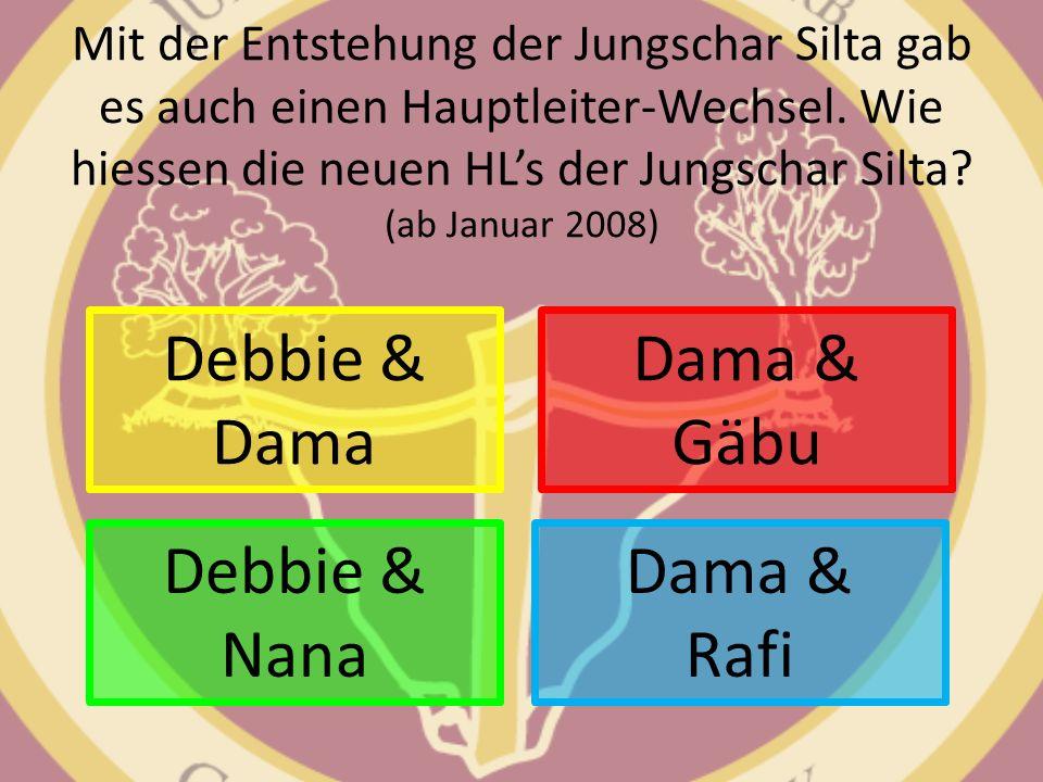 Mit der Entstehung der Jungschar Silta gab es auch einen Hauptleiter-Wechsel. Wie hiessen die neuen HLs der Jungschar Silta? (ab Januar 2008) Debbie &