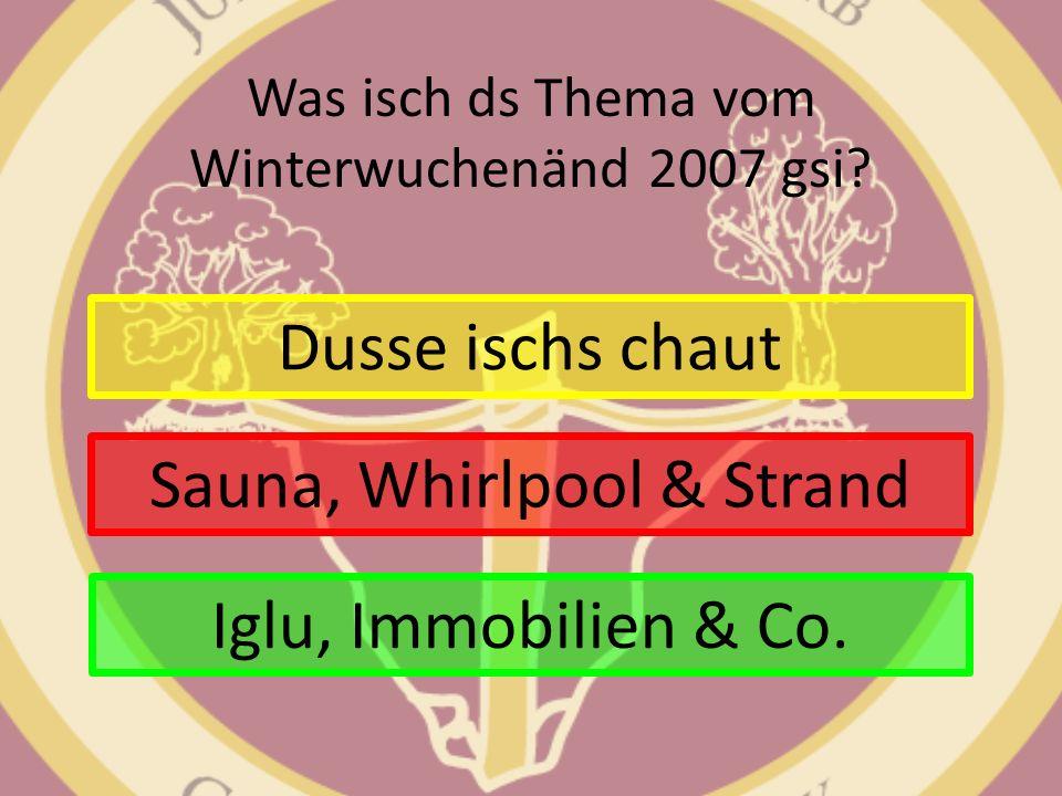 Was isch ds Thema vom Winterwuchenänd 2007 gsi? Dusse ischs chaut Sauna, Whirlpool & Strand Iglu, Immobilien & Co.