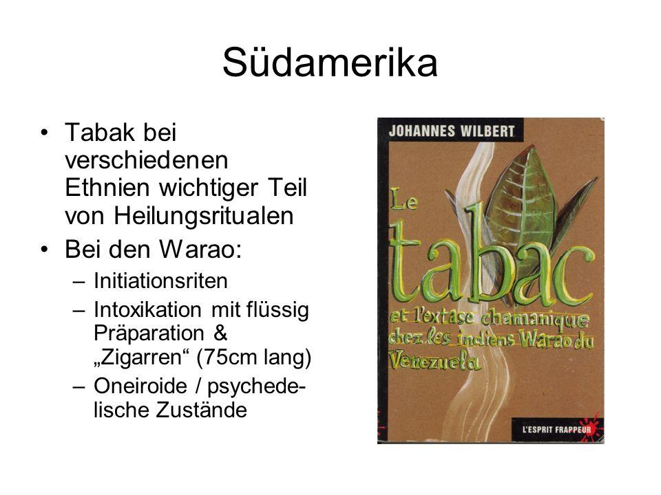 Südamerika Tabak bei verschiedenen Ethnien wichtiger Teil von Heilungsritualen Bei den Warao: –Initiationsriten –Intoxikation mit flüssig Präparation