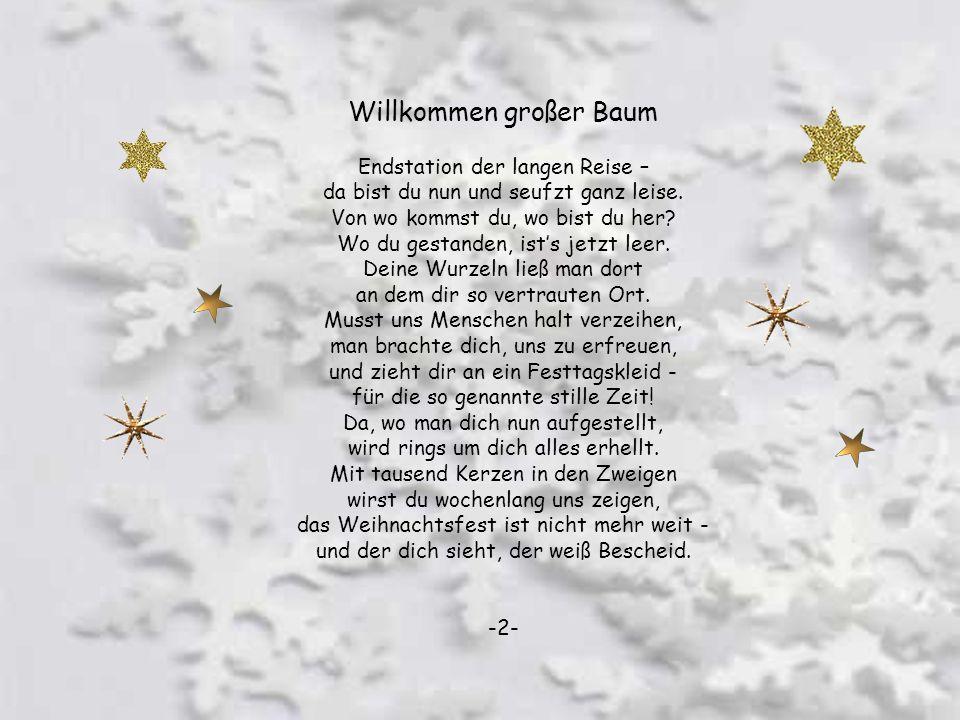 Weihnachtszauber Wenn wieder hell die Kerzen brennen, schaun wir all zum Baume hin, wenn wir auch längst die Wahrheit kennen, kommt uns die Kindheit i