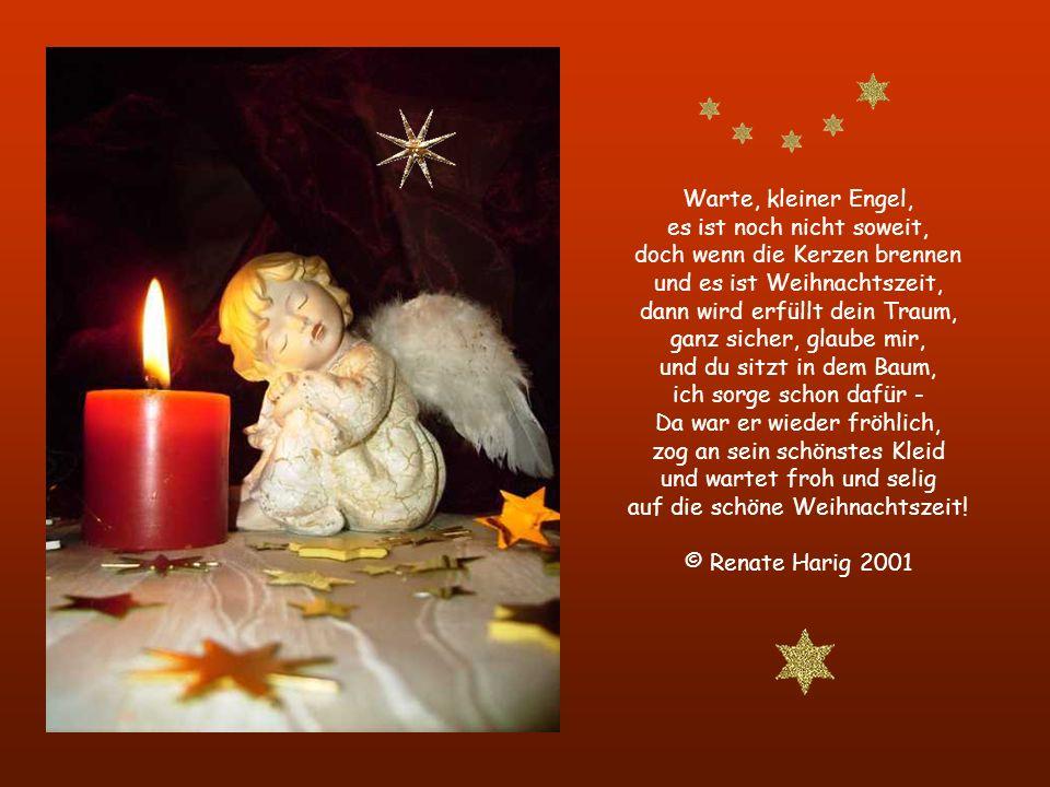Weihnachtsengel Ein kleiner, süßer Engel hatte einen Traum - er sah sich darin sitzen in einem Weihnachtsbaum, von Kerzenduft umgeben und lauter Glitz