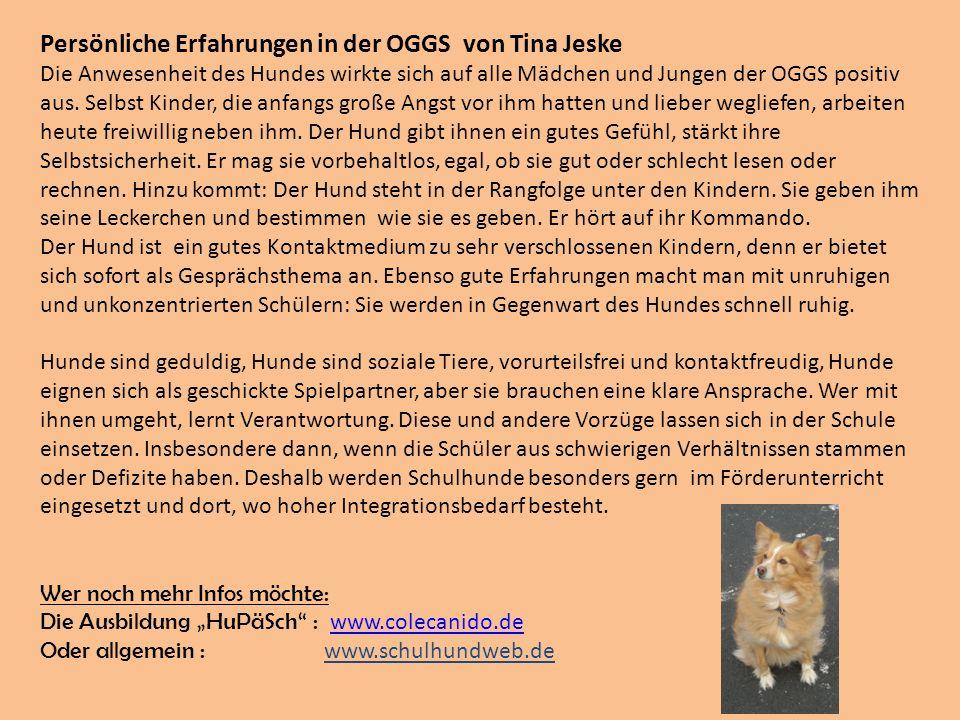 Persönliche Erfahrungen in der OGGS von Tina Jeske Die Anwesenheit des Hundes wirkte sich auf alle Mädchen und Jungen der OGGS positiv aus. Selbst Kin