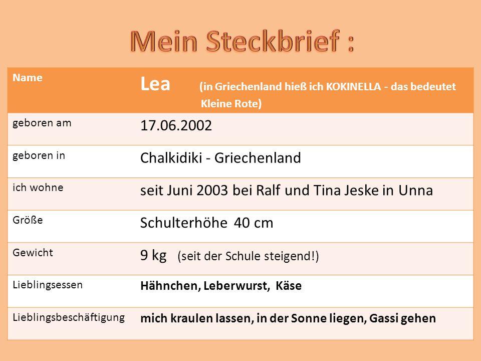 Name Lea (in Griechenland hieß ich KOKINELLA - das bedeutet Kleine Rote) geboren am 17.06.2002 geboren in Chalkidiki - Griechenland ich wohne seit Juni 2003 bei Ralf und Tina Jeske in Unna Größe Schulterhöhe 40 cm Gewicht 9 kg (seit der Schule steigend!) Lieblingsessen Hähnchen, Leberwurst, Käse Lieblingsbeschäftigung mich kraulen lassen, in der Sonne liegen, Gassi gehen