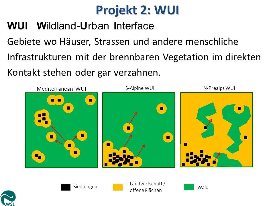 Projekt 2: WUI WUI Wildland-Urban Interface Gebiete wo Häuser, Strassen und andere menschliche Infrastrukturen mit der brennbaren Vegetation im direkt