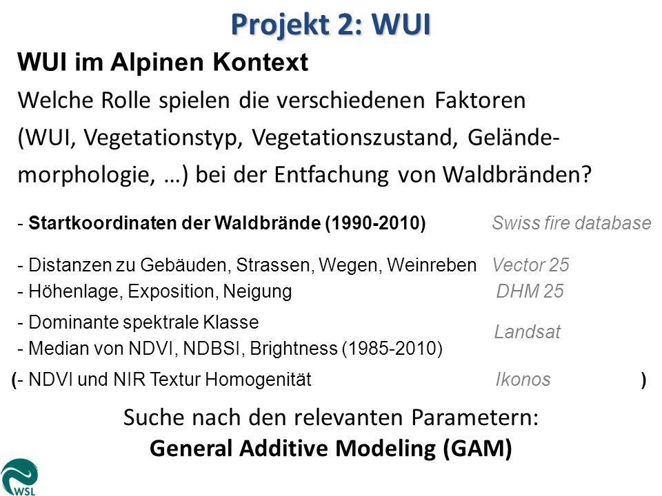 Projekt 2: WUI WUI im Alpinen Kontext Welche Rolle spielen die verschiedenen Faktoren (WUI, Vegetationstyp, Vegetationszustand, Gelände- morphologie,