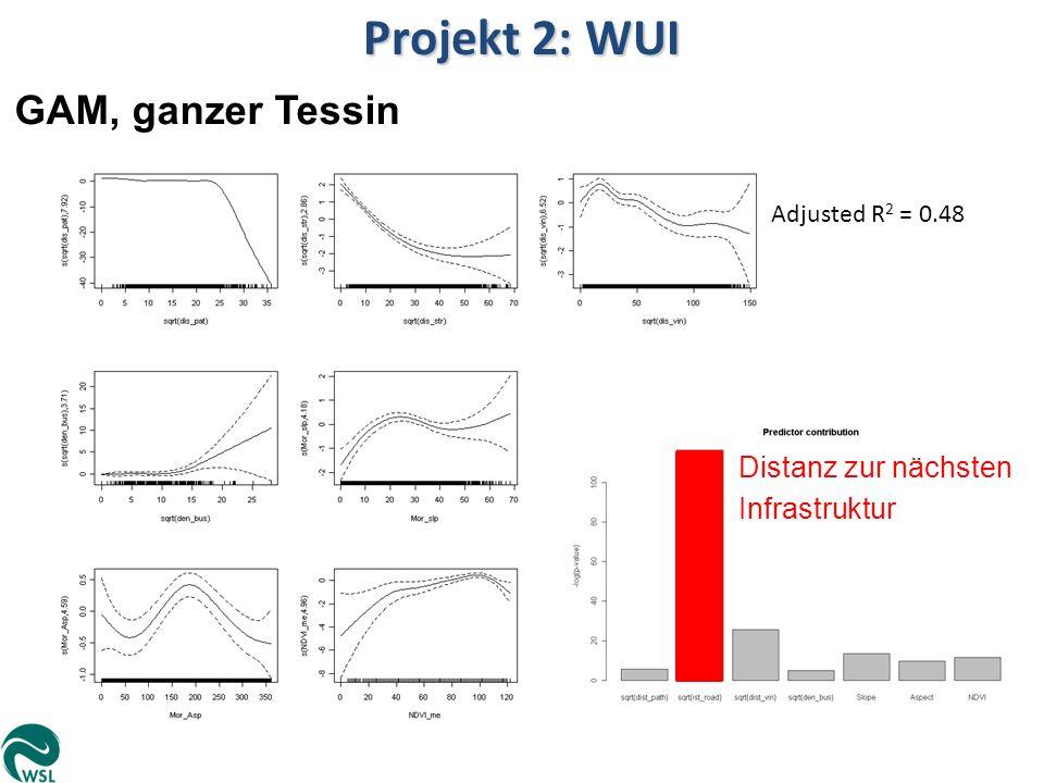 Projekt 2: WUI GAM, ganzer Tessin Adjusted R 2 = 0.48 Distanz zur nächsten Infrastruktur