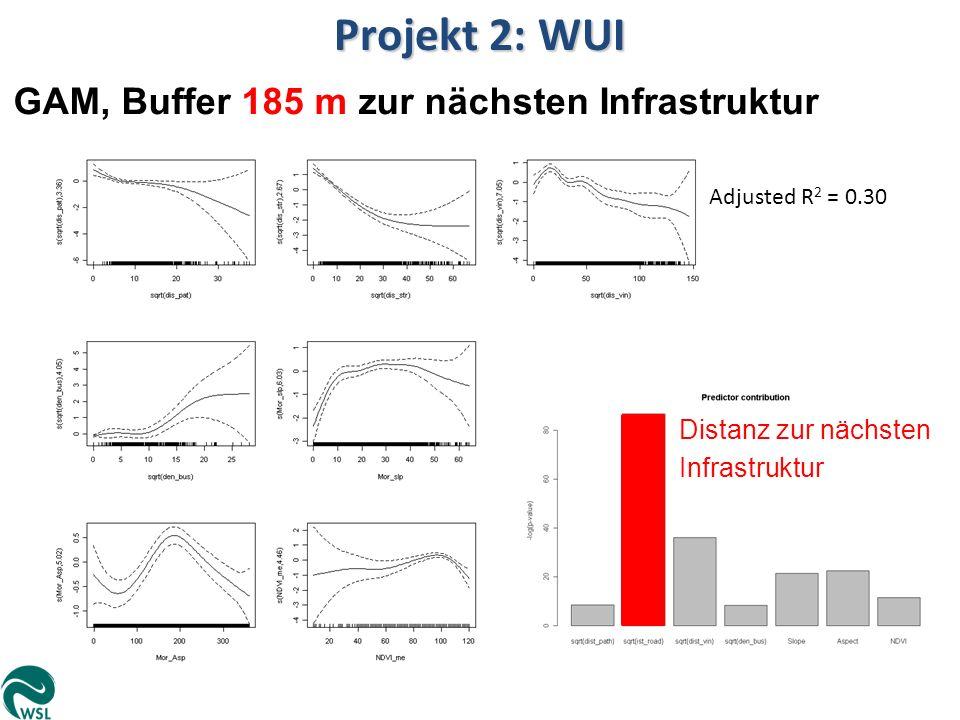 Adjusted R 2 = 0.30 Projekt 2: WUI GAM, Buffer 185 m zur nächsten Infrastruktur Distanz zur nächsten Infrastruktur
