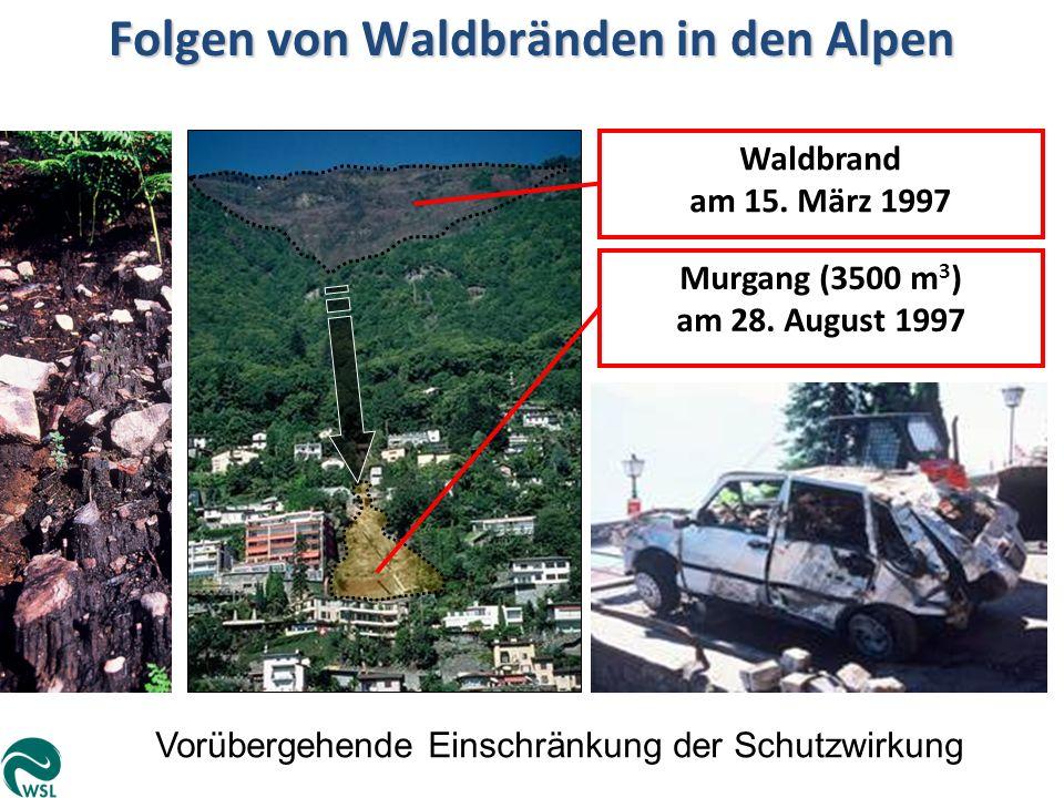 Folgen von Waldbränden in den Alpen Vorübergehende Einschränkung der Schutzwirkung Murgang (3500 m 3 ) am 28. August 1997 Waldbrand am 15. März 1997