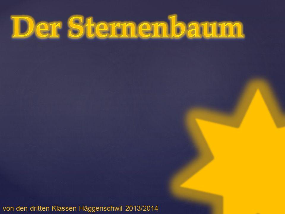 von den dritten Klassen Häggenschwil 2013/2014