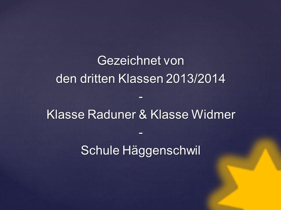Gezeichnet von den dritten Klassen 2013/2014 - Klasse Raduner & Klasse Widmer - Schule Häggenschwil