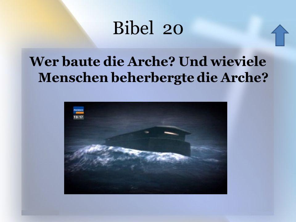 Bibel 20 Wer baute die Arche.Und wieviele Menschen beherbergte die Arche.