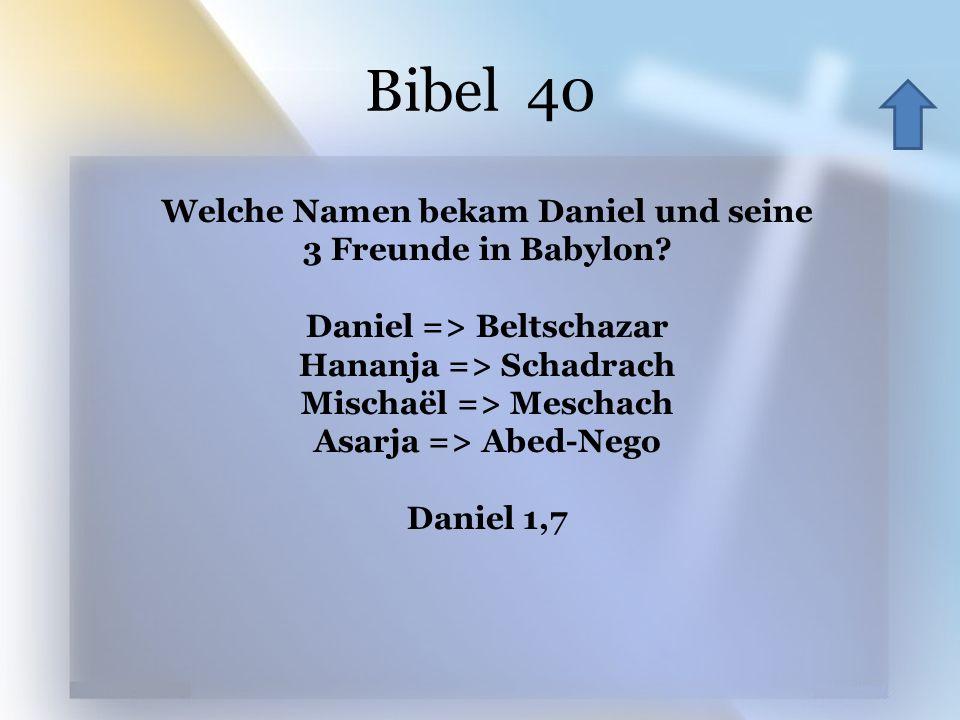 Bibel 40 Welche Namen bekam Daniel und seine 3 Freunde in Babylon? Daniel => Beltschazar Hananja => Schadrach Mischaël => Meschach Asarja => Abed-Nego