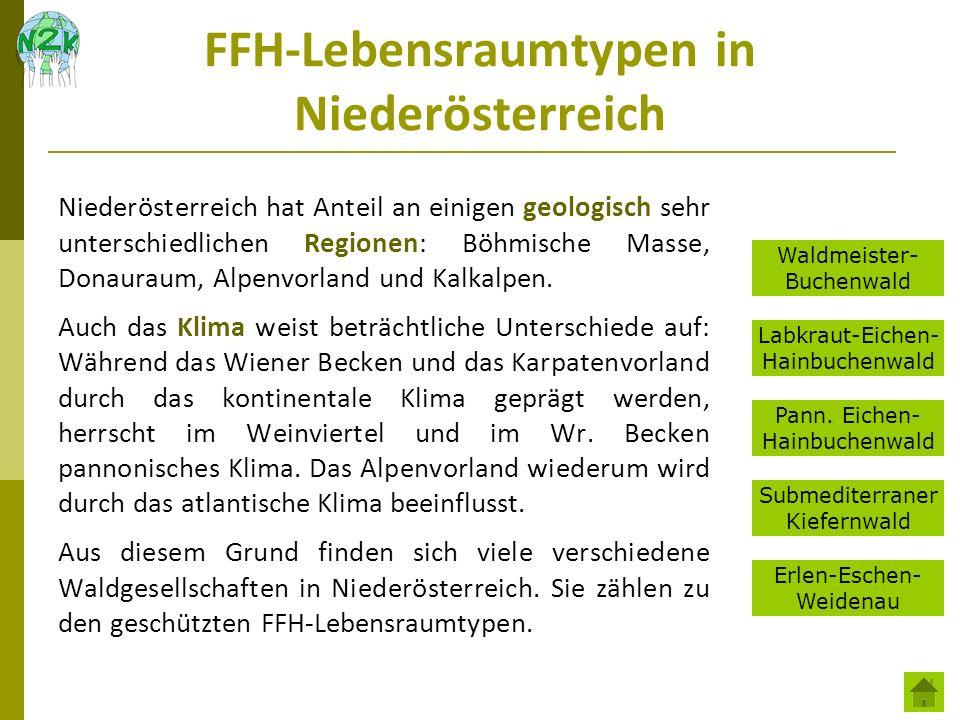 FFH-Lebensraumtypen in Niederösterreich Niederösterreich hat Anteil an einigen geologisch sehr unterschiedlichen Regionen: Böhmische Masse, Donauraum,