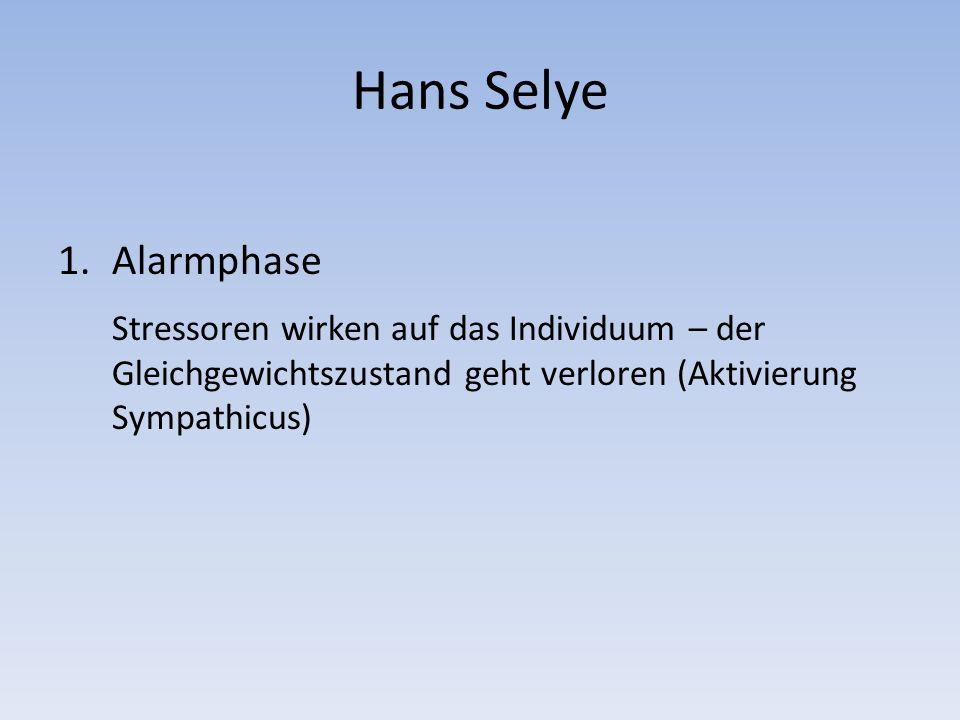 Hans Selye 1.Alarmphase Stressoren wirken auf das Individuum – der Gleichgewichtszustand geht verloren (Aktivierung Sympathicus)