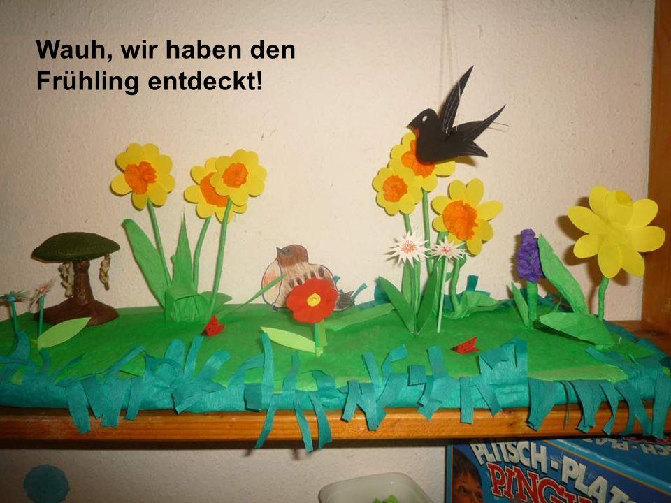 Wauh, wir haben den Frühling entdeckt!