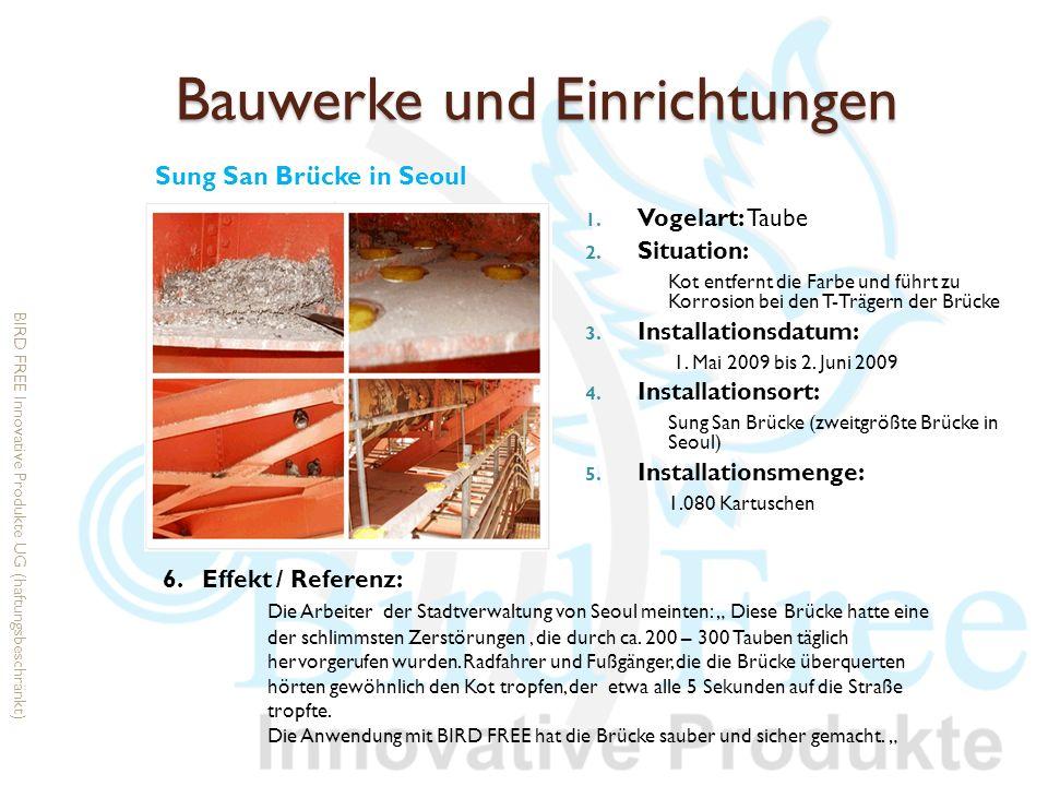 Bauwerke und Einrichtungen 1. Vogelart: Taube 2. Situation: Kot entfernt die Farbe und führt zu Korrosion bei den T-Trägern der Brücke 3. Installation
