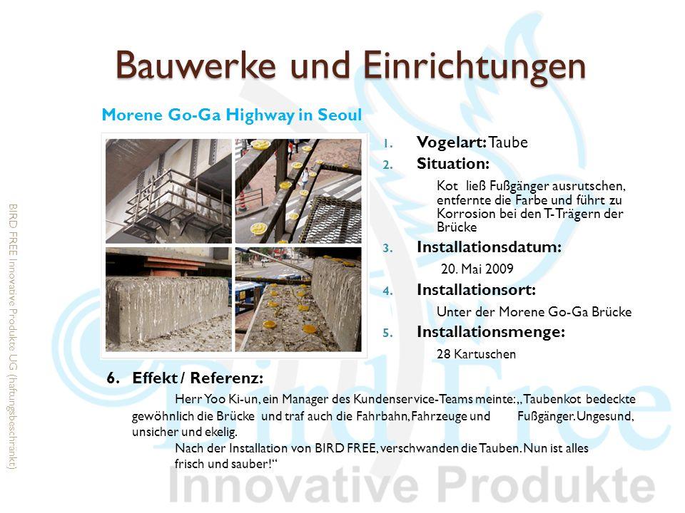 Bauwerke und Einrichtungen 1. Vogelart: Taube 2. Situation: Kot ließ Fußgänger ausrutschen, entfernte die Farbe und führt zu Korrosion bei den T-Träge