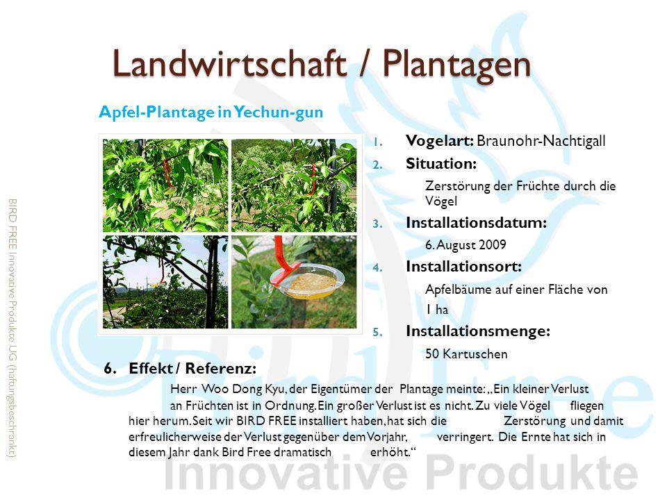 Landwirtschaft / Plantagen 1. Vogelart: Braunohr-Nachtigall 2. Situation: Zerstörung der Früchte durch die Vögel 3. Installationsdatum: 6. August 2009