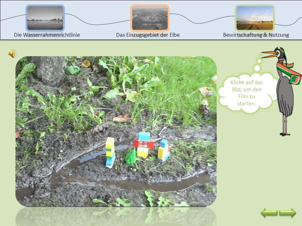 Die Ursachen für ein Hochwasser liegen größtenteils in der Natur, aber auch beim Menschen. Schau dir auf der nächsten Seite ein Experiment zum Hochwas