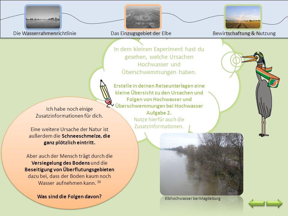 Klicke auf das Bild, um den Film zu starten. Die WasserrahmenrichtlinieDas Einzugsgebiet der ElbeBewirtschaftung & Nutzung