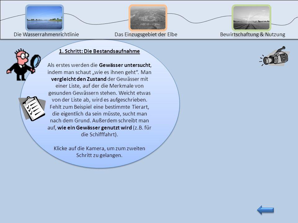Die Wasserrahmenrichtlinie ist ein Gesetz zum Schutz aller Gewässer. Mit ihrer Hilfe soll die Verschmutzung der Gewässer verhindert und ihre Wasserqua