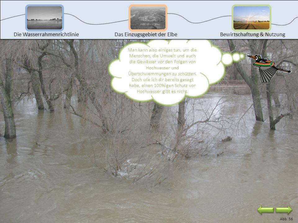 In der Wasserrahmenrichtlinie gibt es keine Regeln für den Hochwasserschutz. Es wurde nur festgestellt, dass durch Hochwasser Schadstoffe in die Gewäs
