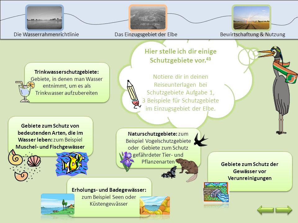 Wusstest du, dass es im Einzugsgebiet der Elbe über 20.000 Schutzgebiete gibt? Welche das sind, erkläre ich dir auf der nächsten Seite. Herzlichen Wil