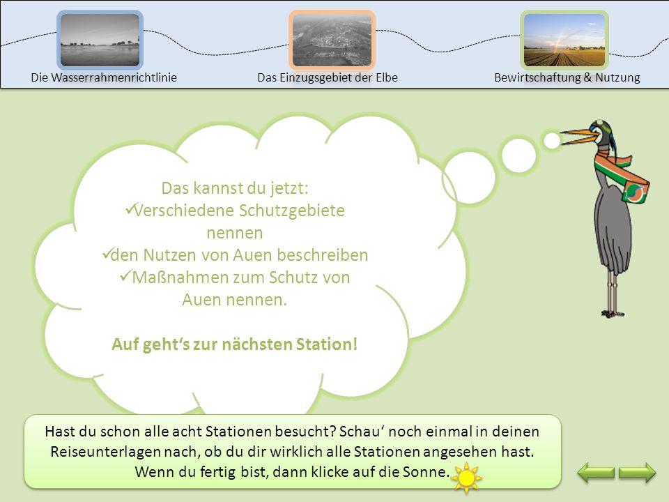 Wenn du dich weiter über das Biosphärenreservat Mittelelbe informieren möchtest, dann klicke auf das Symbol. Unser lieber Elbebiber hat schon wieder a