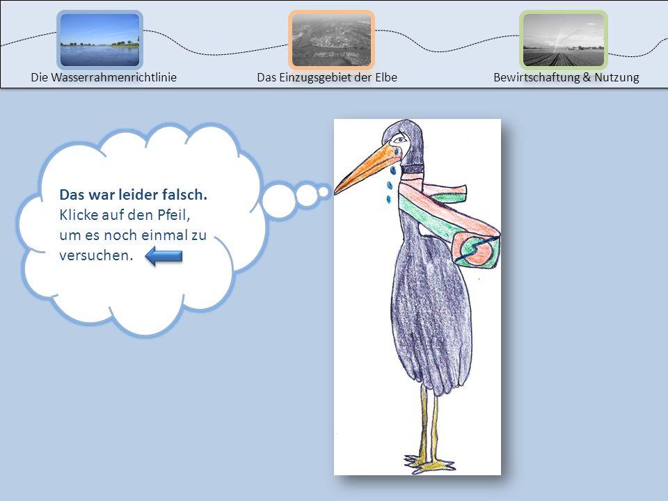 Bitte klicke die richtige Antwort an! Die WasserrahmenrichtlinieDas Einzugsgebiet der ElbeBewirtschaftung & Nutzung Wissensquiz: Die Wasserrahmenricht