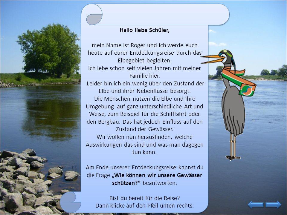 Na nu?! Was liegt denn dort am Ufer der Elbe? Eine Flaschenpost!!! Klicke auf die Flasche, um zu erfahren was in dem Brief steht! Na nu?! Was liegt de