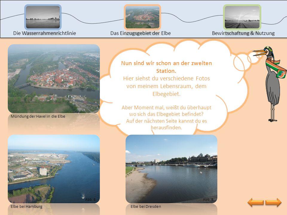 Als nächstes möchte ich dir meinen Lebensraum – das Elbegebiet – vorstellen. Klicke dazu auf die zweite Station. Die Wasserrahmenrichtlinie Das Einzug