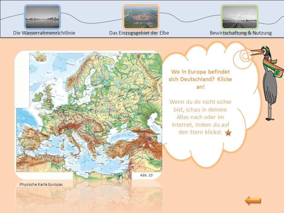 Nun s Nun sind wir schon an der zweiten Station. Hier siehst du verschiedene Fotos von meinem Lebensraum, dem Elbegebiet. Aber Moment mal, weißt du üb