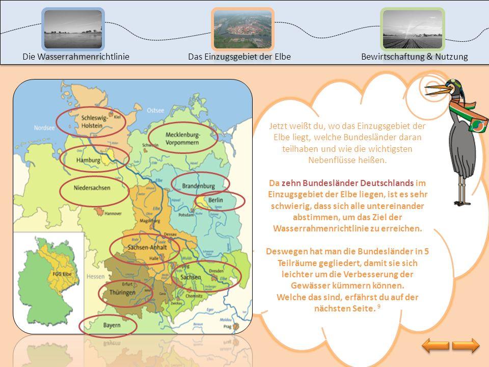 Jetzt bist du an der Reihe. Gestalte selbst eine Karte vom Einzugsgebiet der Elbe. Hol dir ein Arbeitsblatt beim Lehrer oder drucke es selbst aus, ind