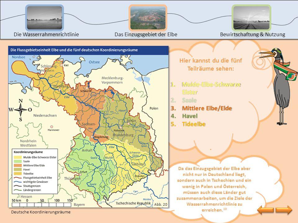 Jetzt weißt du, wo das Einzugsgebiet der Elbe liegt, welche Bundesländer daran teilhaben und wie die wichtigsten Nebenflüsse heißen. Da zehn Bundeslän