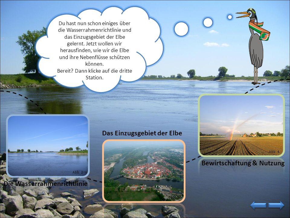 Im Einzugsgebiet der Elbe leben über 24 Millionen Menschen. Das sind fast ein Viertel aller Einwohner Deutschlands. Nun habe ich dir erzählt, dass die