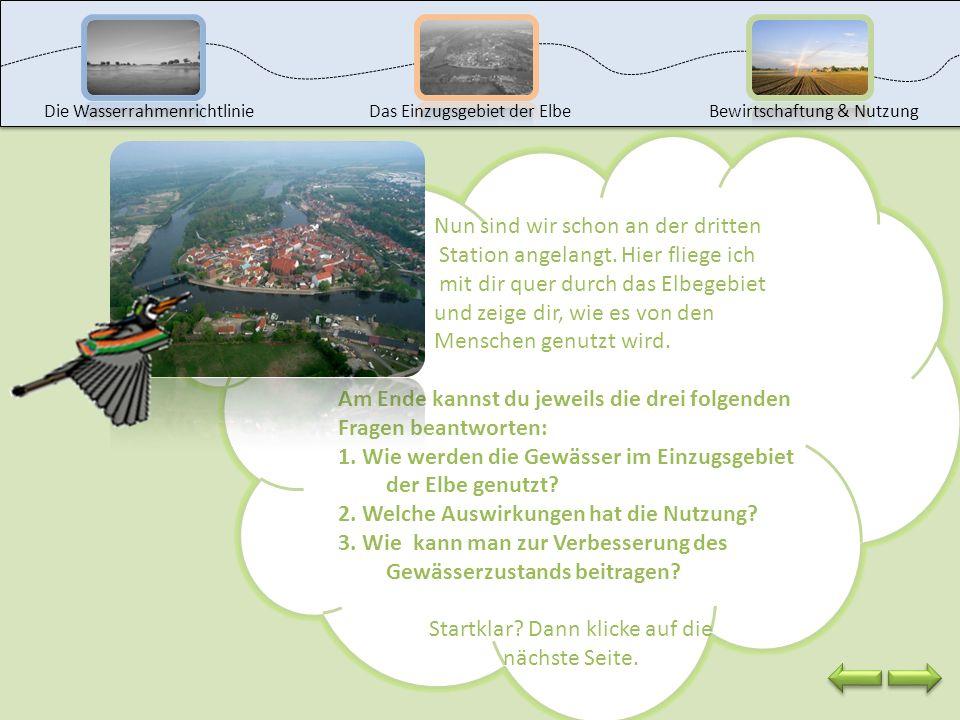 Du hast nun schon einiges über die Wasserrahmenrichtlinie und das Einzugsgebiet der Elbe gelernt. Jetzt wollen wir herausfinden, wie wir die Elbe und
