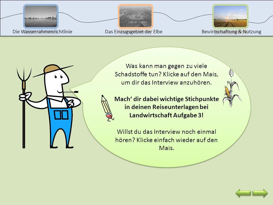 Elbezufluss Grundwasser Maisfeld Mein Feld muss gut gedüngt werden, damit ich später mehr Mais ernten kann. Ich muss aber auch Pflanzenschutzmittel ei
