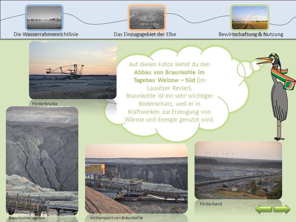 Glück Auf! Willkommen an der Station: Bergbau. KohleKohle ist ein wichtiger Bodenschatz. Man unterscheidet dabei in Steinkohle und Braunkohle. In Deut