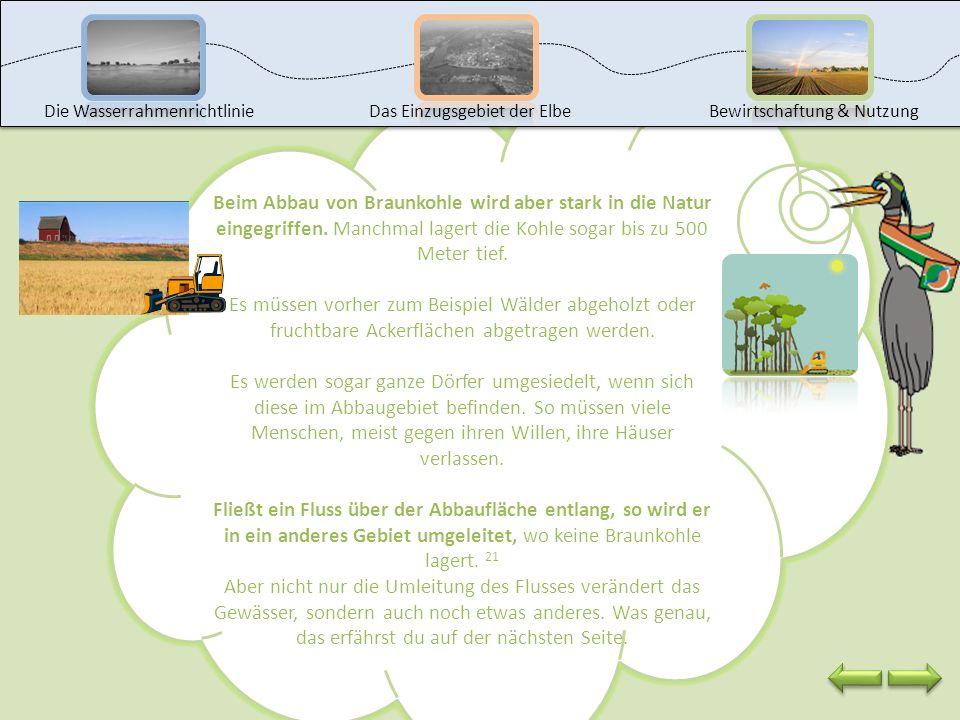 Auf diesen Fotos siehst du den Abbau von Braunkohle im Tagebau Welzow – Süd (im Lausitzer Revier). Braunkohle ist ein sehr wichtiger Bodenschatz, weil