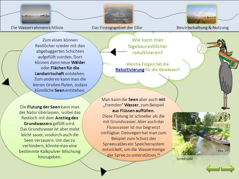 Seit 1990 hat sich die Förderung von Braunkohle jedoch verringert und viele Tagebaue wurden stillgelegt. Landschaften, die durch den Bergbau zerstört
