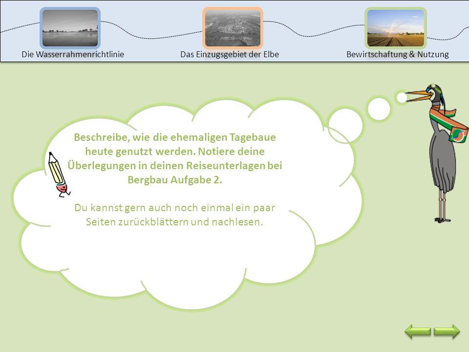 Im Lausitzer Revier entstehen auf ehemaligen Bergbauflächen wieder Wälder und Flächen, die zur Landwirtschaft genutzt werden können. Außerdem wird ein