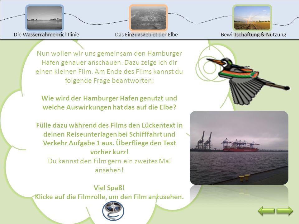 Wusstest du, dass der Hamburger Hafen auch Tor zur Welt genannt wird und der größte Seehafen Deutschlands ist?Hafen Der Hafen liegt etwa 100 km von de