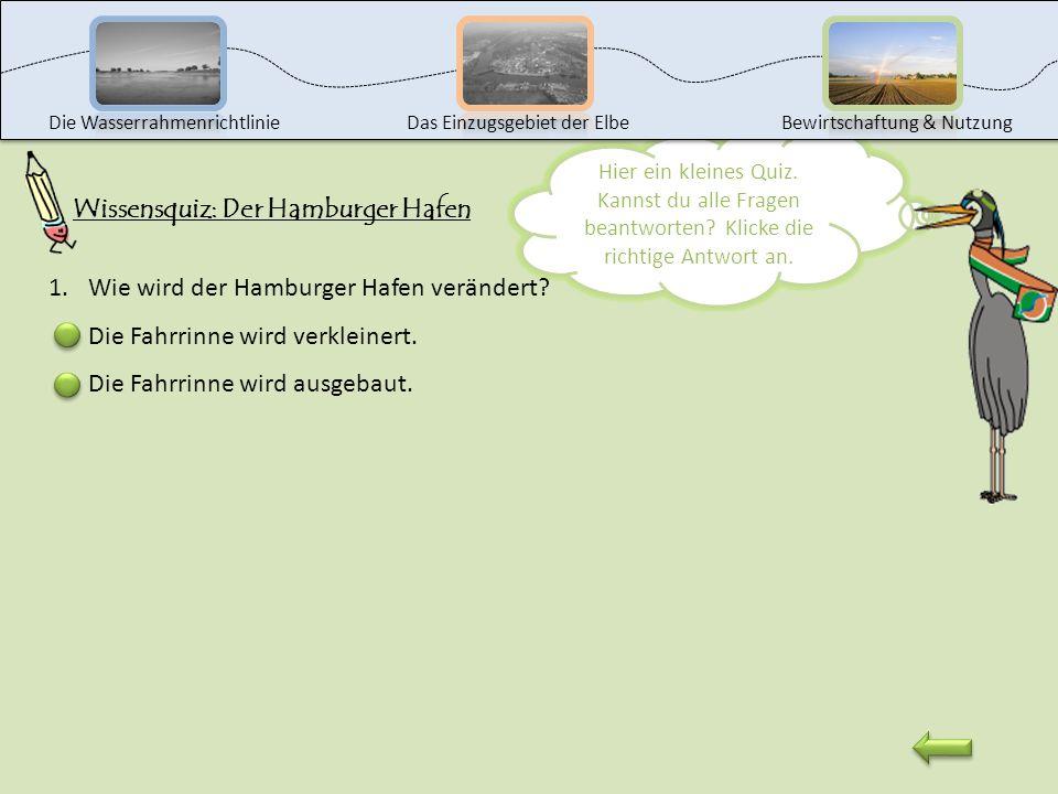 Nun wollen wir uns gemeinsam den Hamburger Hafen genauer anschauen. Dazu zeige ich dir einen kleinen Film. Am Ende des Films kannst du folgende Frage