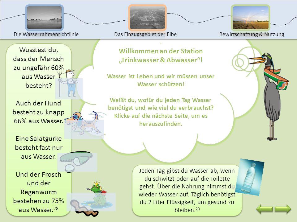 Das kannst du jetzt: die Veränderungen des Gewässers im Hamburger Hafen beschreiben Maßnahmen nennen, um das Gewässer im Hamburger Hafen zu schützen.