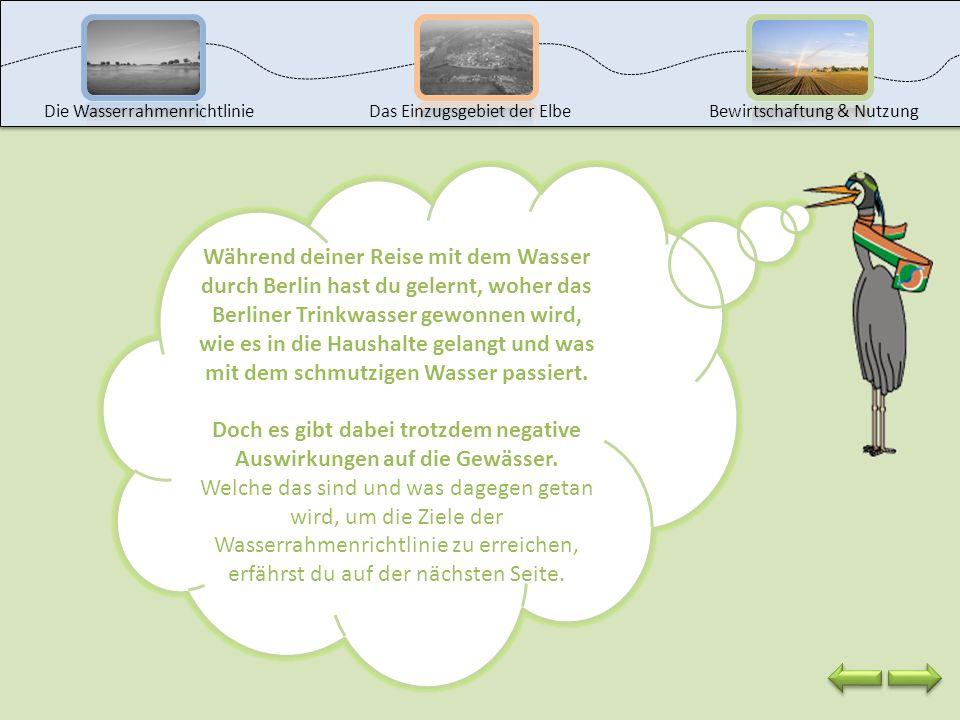 Die Fragen wollen wir beantworten, indem wir eine Reise mit dem Wasser durch Berlin unternehmen. Klicke auf den Wasserhahn, um die Reise zu beginnen.
